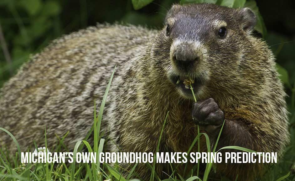 Michigan Groundhog Day