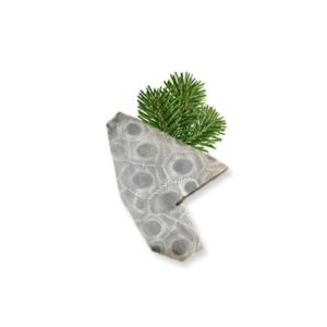 Petoskey Stone Chip W