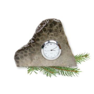Petoskey Stone Clock A Desk Top Clock Stone