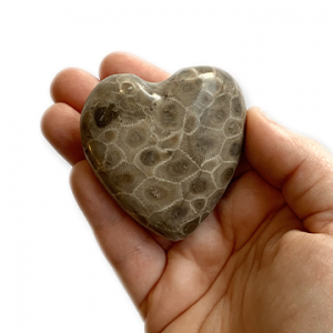 Petoskey Stone Hearts