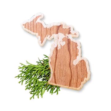 Wooden Lower Peninsula Michigan Sticker