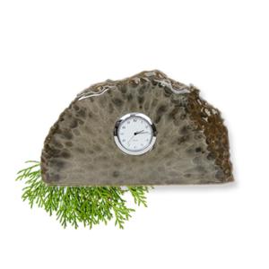Petoskey Stone Clock Desk Top Clock Stone D Front