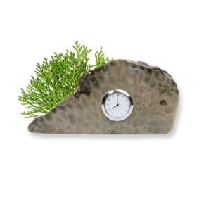 Petoskey Stone Desktop Bookshelf Clock G Front