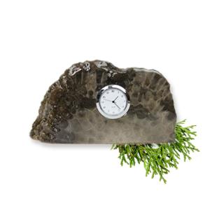 Petoskey Stone Desktop Bookshelf Clock H Front
