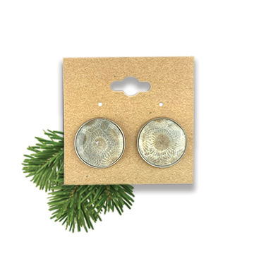 Petoskey Stone Stud Earring Large Stainless Steel