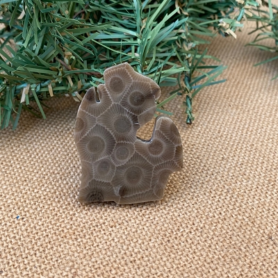 Lower Peninsula Petoskey Stone Magnet - E