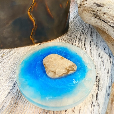 Petoskey Stone Coaster - B