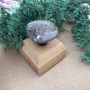 Petoskey Stone Wine Stopper E