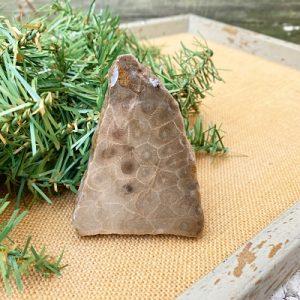 Petoskey Stone Slab D1