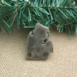 Small Lower Peninsula Petoskey Stone Magnet G