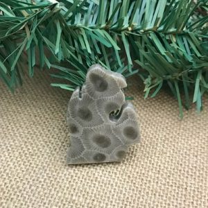 Small Lower Peninsula Petoskey Stone Magnet O