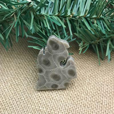 Small Lower Peninsula Petoskey Stone Magnet O