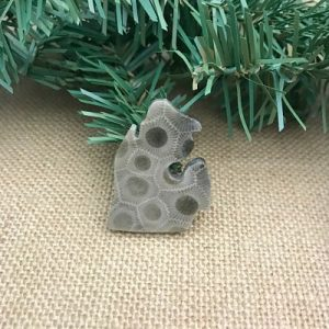 Small Lower Peninsula Petoskey Stone Magnet Q