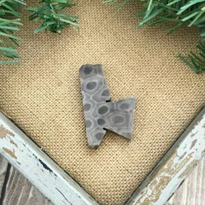 Petoskey Stone Chip Q1