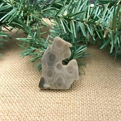 Small Lower Peninsula Petoskey Stone Magnet T