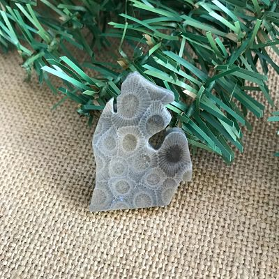 Small Lower Peninsula Petoskey Stone Magnet Y
