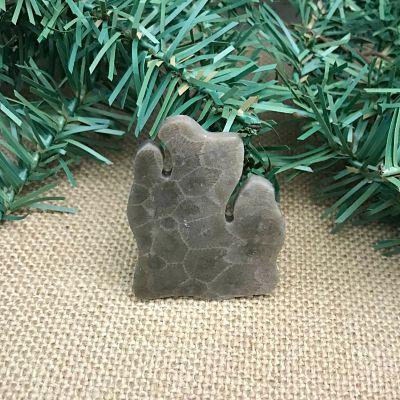 Lower Peninsula Petoskey Stone Magnet D