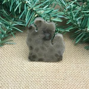 Lower Peninsula Petoskey Stone Magnet I