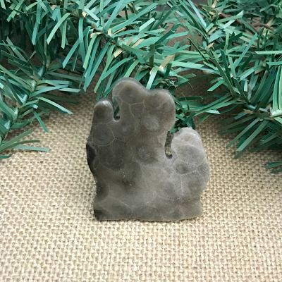 Lower Peninsula Petoskey Stone Magnet L