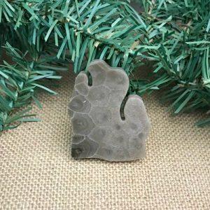 Lower Peninsula Petoskey Stone Magnet R