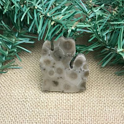 Lower Peninsula Petoskey Stone Magnet T