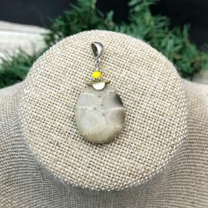 Petoskey Stone Beaded Pendant X