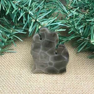 Lower Peninsula Petoskey Stone Magnet V