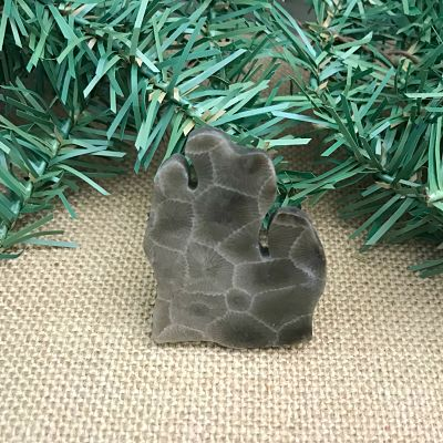 Lower Peninsula Petoskey Stone Magnet V