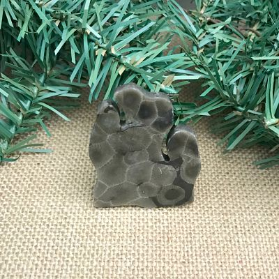Lower Peninsula Petoskey Stone Magnet Y
