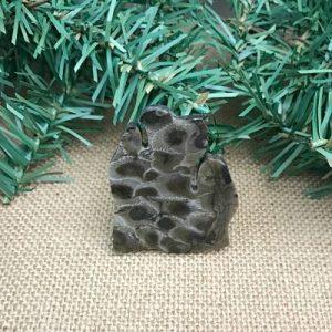 Lower Peninsula Petoskey Stone Magnet Z