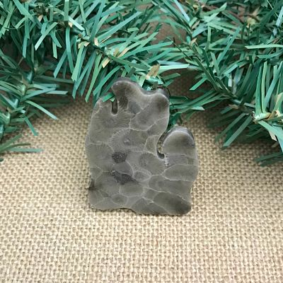 Lower Peninsula Petoskey Stone Magnet A1