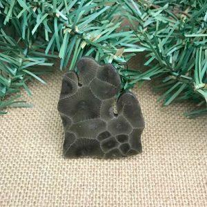 Lower Peninsula Petoskey Stone Magnet B1