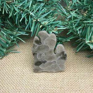 Lower Peninsula Petoskey Stone Magnet C1