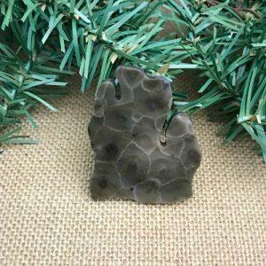 Lower Peninsula Petoskey Stone Magnet O1