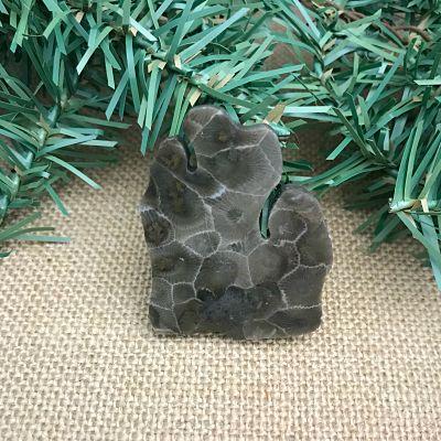 Lower Peninsula Petoskey Stone Magnet P1