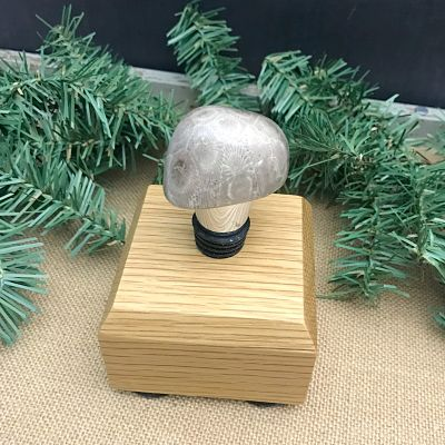 Petoskey Stone Wine Stopper G