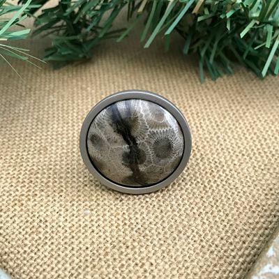 Round Petoskey Stone Cabinet Cabinet Knob - Silver