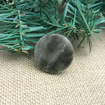 Petoskey Stone Coin Magnet H