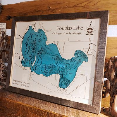 Douglas Lake 3-D Lake Art