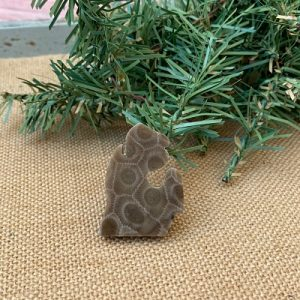 Small Lower Peninsula Petoskey Stone Magnet - A