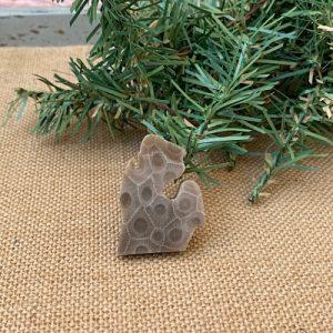 Small Lower Peninsula Petoskey Stone Magnet - C