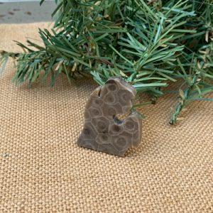 Small Lower Peninsula Petoskey Stone Magnet - D