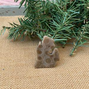 Small Lower Peninsula Petoskey Stone Magnet - E