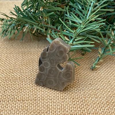 Small Lower Peninsula Petoskey Stone Magnet - G