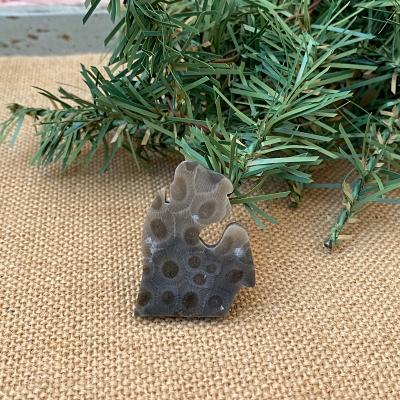 Small Lower Peninsula Petoskey Stone Magnet - H