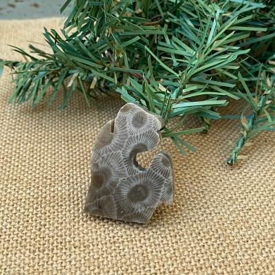 Small Lower Peninsula Petoskey Stone Magnet - I
