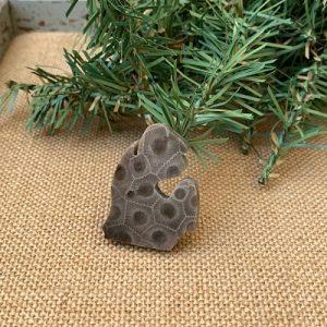 Small Lower Peninsula Petoskey Stone Magnet - M