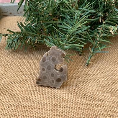 Small Lower Peninsula Petoskey Stone Magnet - Q
