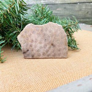 Petoskey Stone Slab A
