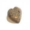 Polished Petoskey Stone Hearts